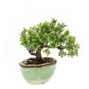 Artificial Ficus mini bonsai 19cm in pot green