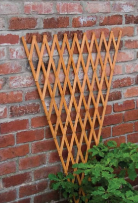 The Good Life 2.4x1.2m Timber Fan Trellis