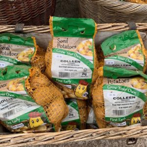 Colleen Organic Seed Potatoes 2Kg